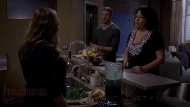 Callie y Arizona resumen de episodio 7×14