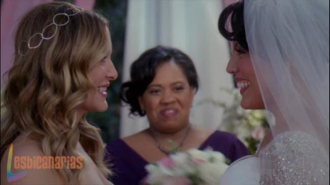 Callie y Arizona resumen de episodio 7×20