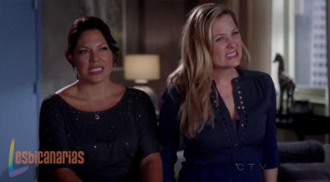 Callie y Arizona resumen de episodio 8×12