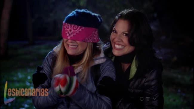 Callie y Arizona resumen de episodio 8×14