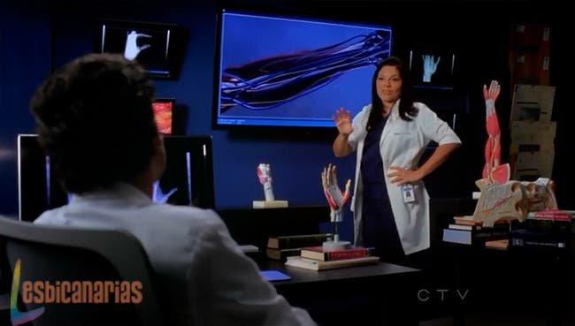 Callie explicando el plan a Derek