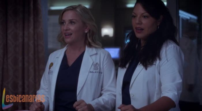 Callie y Arizona: resumen de episodio 11×01 Anatomía de Grey