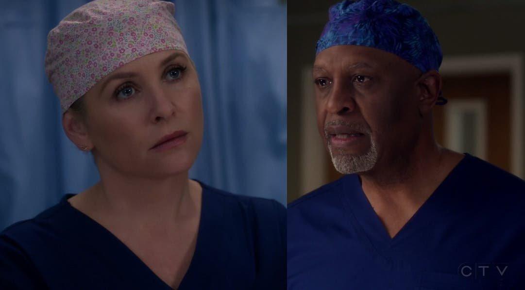Arizona y Eliza resumen de episodios 13×17-18 Anatomía de Grey
